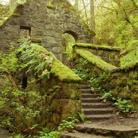 "Mossy House ""The Stone House"" Photo,Architectural,Forest Home,Moss Green,Enchanted Woods Art,Hiking Print,Portland Oregon,12x18 Forest Print"