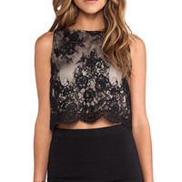Alice + Olivia Lace Crop Top in Black