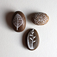 Life Cycle Stone Set - Hand Painted Stones - Original Painting - Rock Art, Painted Pebbles