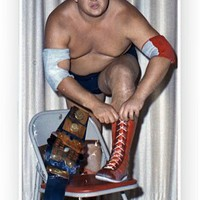 Samsung Galaxy S4, Dusty Rhodes WWE iPhone, New glossy phonecase