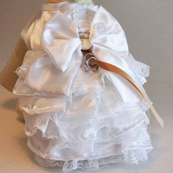 Champagne White Dog dress ring bearer, Pets Wedding accessory, Chic, Harness, Lace