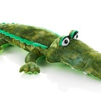 Snooki's Crocodilly