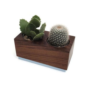 Succulent planter - Walnut Handmade Planter - ocean blue with a natural finish, for birthday and wedding, wood planter.