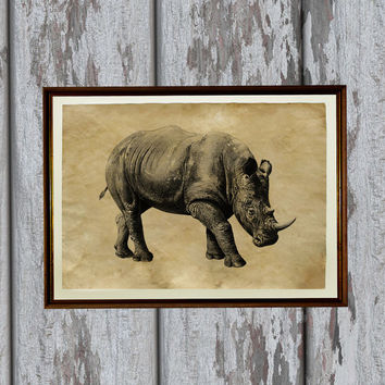 Rhino poster African animal print Safari style Natural history illustration 8.3 x 11.7 inches