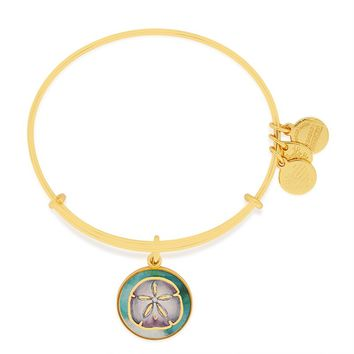 Sand Dollar Art Infusion Charm Bangle