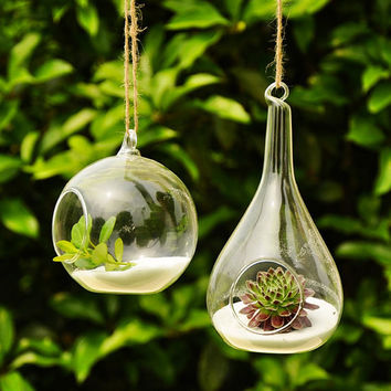 2 PCS   transparent hanging round globe vase creative home decoration Succulent Terrarium Kit Housewarming Wedding Green Gift