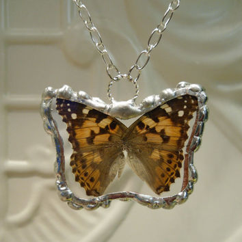 Real Butterfly Wing Pendant   Painted Lady Nymph by workofwhimsy