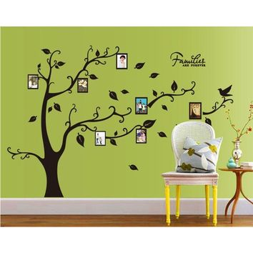 Frame Photo Family Tree Wall Sticker