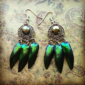 Jewel Beetle Earrings, Iridescent green, Boho Wing Earrings, natural beetle Elytra with silver toned hoop and surgical steel ear wires