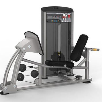 Platinum Series 9510 Leg Press