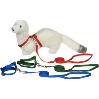 Petco Deluxe Ferret Harness & Lead Set | Petco Store