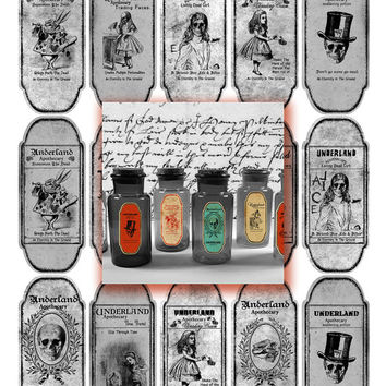 5 Digital Collage Sheets 15 Alice In Wonderland Halloween Magic Voodoo Apothecary Bottle Jar Labels Tags Halloween instant download