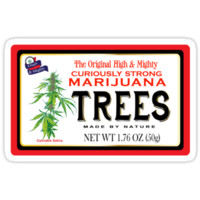 Curiously Strong Marijuana Trees