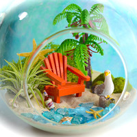 "Beach Terrarium Kit ~ 5.5"" Terrarium ~ Miniature Garden ~ Seagull ~ Adirondack Chair Color choice  ~ Drink Choice ~ Stand Sold Separately"