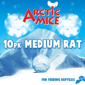 Arctic Mice Medium Frozen Rats