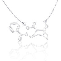 Cocaine Molecule Necklace SIlver Necklace chemistry jewelry
