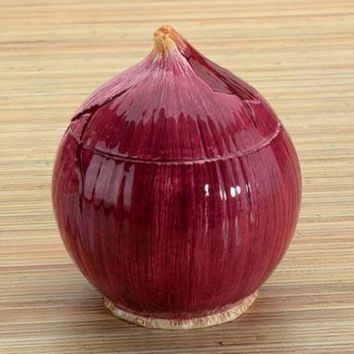 Red Onion Ceramic Sugar Container 5.5H