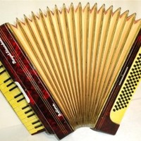 Royal Standard Bellona 80 Bass, 2 Registers, Vintage German Piano Accordion