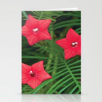Cypress Flower Stationery Cards by Jessica Ivy