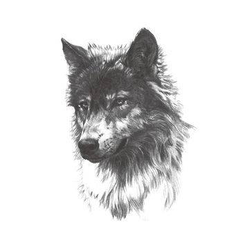 Waterproof Temporary Tattoo Stickers Wild Horror Black Grey Wolf Animals Design Body Art Makeup Tools