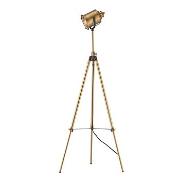 D3223 Ethan Floor Lamp in Aged Brass - Free Shipping!