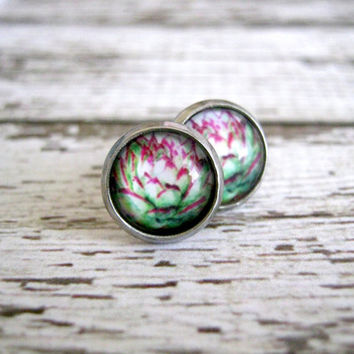Succulent Cacti Stud Earrings : Glass Jewelry Pink