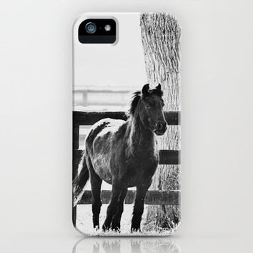 horse by the fence iPhone Case by Beverly LeFevre | Society6