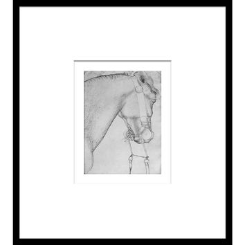 Horse Sketch in Black & White I, Drawings