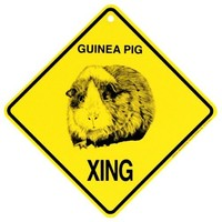 Guinea Pig Xing caution Crossing Sign wildlife Gift