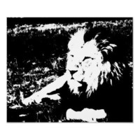 Lion in Black and White Poster from Zazzle.com