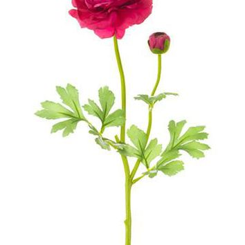 "Silk Ranunculus Spray in Berry Pink - 25"" Tall"