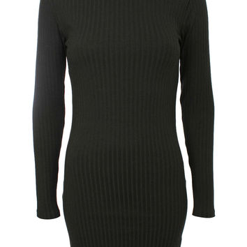 Allie Long Sleeve Turtle Neck Ribbed Bodycon Dress in Black