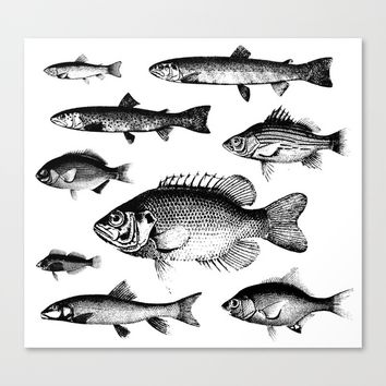VINTAGE FISH Canvas Print by Adorehandcrafted