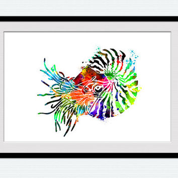 Nautilus print, nautilus art, nautilus watercolor, wall decor, nautical poster, living room art, watercolor silhouette, colorful art, W7