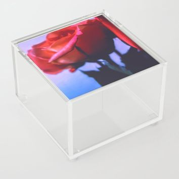 Notice Me Acrylic Box by duckyb