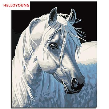 YH166 DIY Handpainted Oil Painting White Horse Digital Painting by numbers oil paintings chinese scroll paintings Home Decor