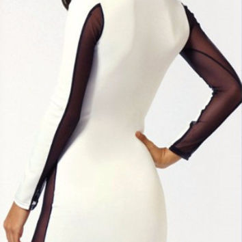 White Bodycon Mesh Embroidered Long Sleeve Dress