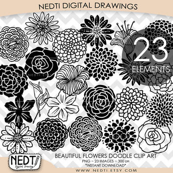 Beautiful Flowers Hand Drawn Doodle Clip Art, Flora Clipart, PNG, Digital Stamps Images, Instant Download