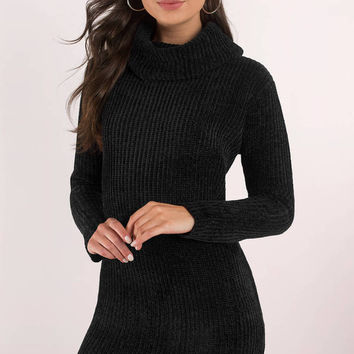 Hailey Turtleneck Sweater Dress