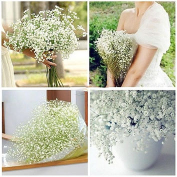 Atificial Baby's Breath Gypsophila Wedding Plastic Flowers White Home D¨¦cor (Color: White) [7981678599]