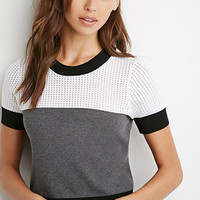 Pointelle Knit Colorblocked Top