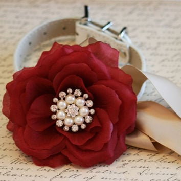 Burgundy and Champagne wedding, Pearl and rhinestone floral dog collar