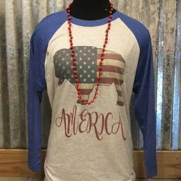 Blue 3/4 length Sleeve Vintage Buffalo Flag T-Shirt