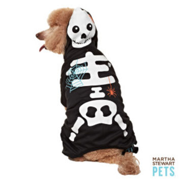 Martha Stewart Pets® Glow Skeleton Costume - Dog Halloween - Dog - PetSmart