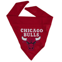 Chicago Bulls - Logo Dog Bandana