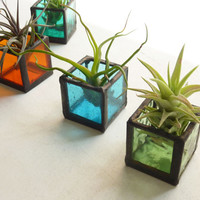Air plant holder - Six stained glass cubes - Pick your own colors