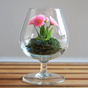 Miniature Pink Daisy Woodland Terrarium by Miss Moss Gifts
