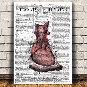 Heart anatomy decor Medical print Gothic poster Macabre print RTA842