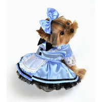 Fantasy Alice Dog Costume - Large