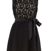Pretty bow and lace dress - Party Dresses - Dresses - Dorothy Perkins